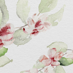 Loose watercolour flowers