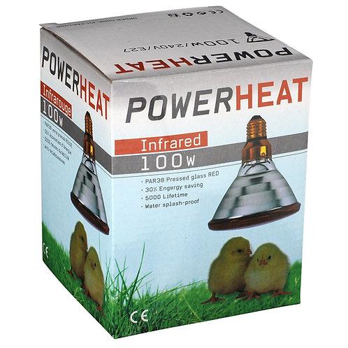 Warmtelamp PAR38 230V / 100W / E27 Rood