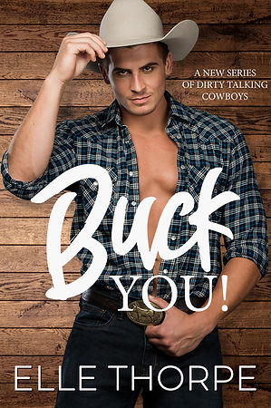 Buck You cover. EBOOKpsd.jpg