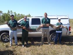 USGS with Python