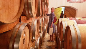 Дегустация вин и винодельни ЮАР