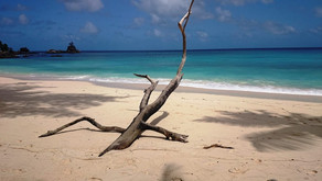 Сейшелы: лучшие пляжи по версии IRADIMA, цены и лайфхаки