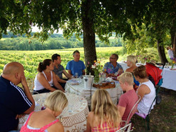 Wonderful wine tours