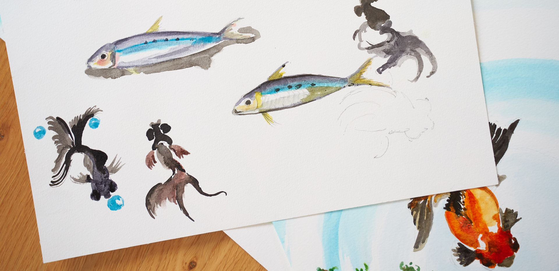 Etude sur les poissons