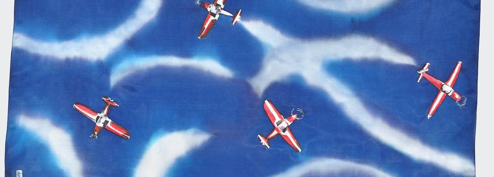 Vol de coucous rouge sur fond marine