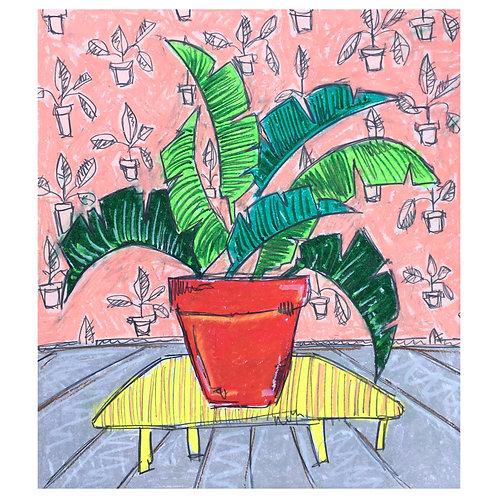 'Corner Pots 2', oil pastel and pencil on paper