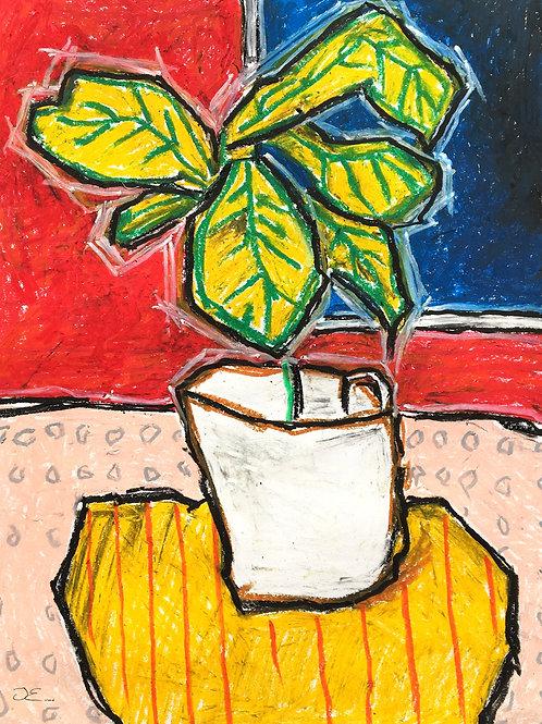 'Corner Pots', 76x56cm, oil pastel on paper.