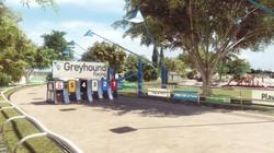 greyhounds_1.1_Snap