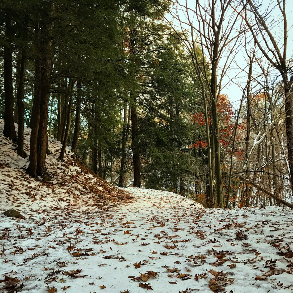 Rambling Thoughts from a Snowy Trail