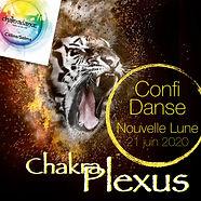 ConfiDanse-Plexus.001.jpeg
