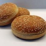 barkhill_hamburger_big_ses_3-150x150