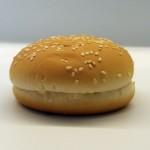 barkhill_hamburger_small_ses_2-150x150