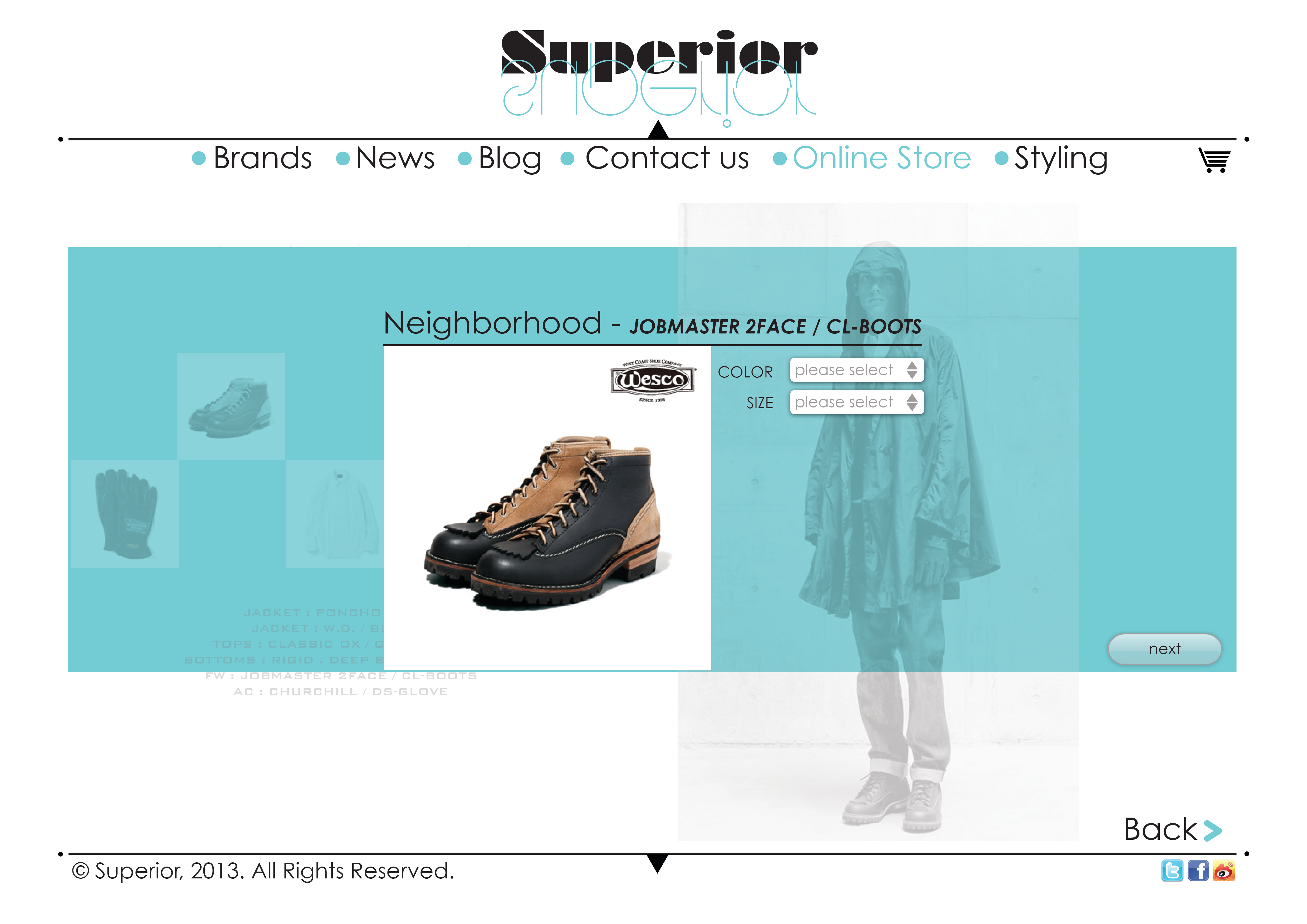 online store( payment part )