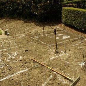 Crear un jardín desde cero, paso a paso