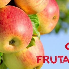 Plantación de frutales