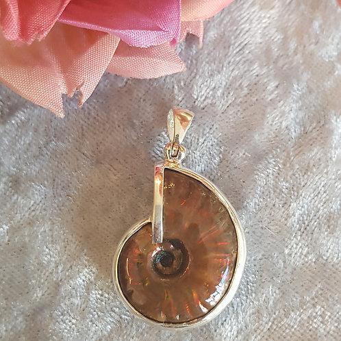 bunt schillernder Ammonit in Silber gefasst von Starborn
