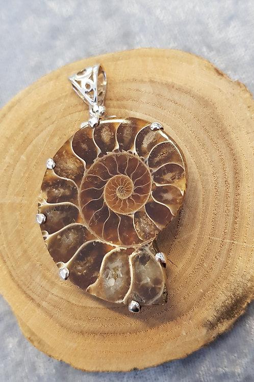 Anhänger Silber, Ammonithälfte