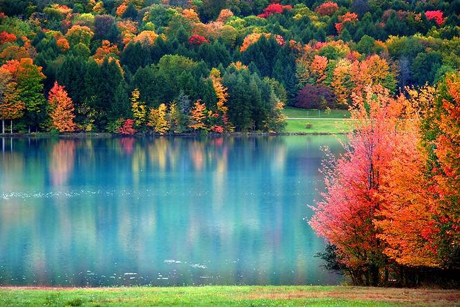 Fall colors small.jpeg