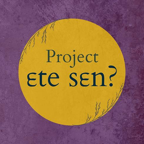 ɛte sɛn logo.png