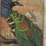 peacock digi tag #1.png