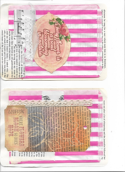 journal pocket pages.png