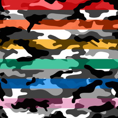 Rainbow Camo