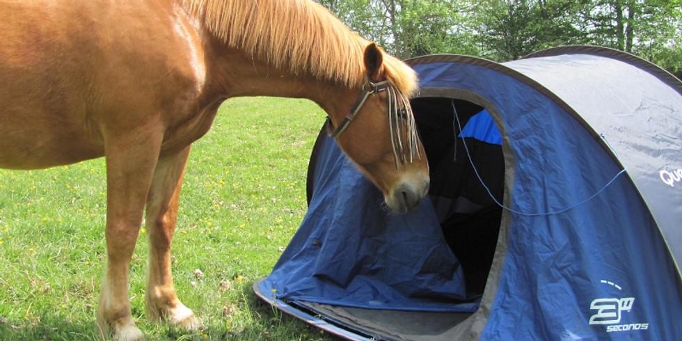 2 jours randonnée sous tente