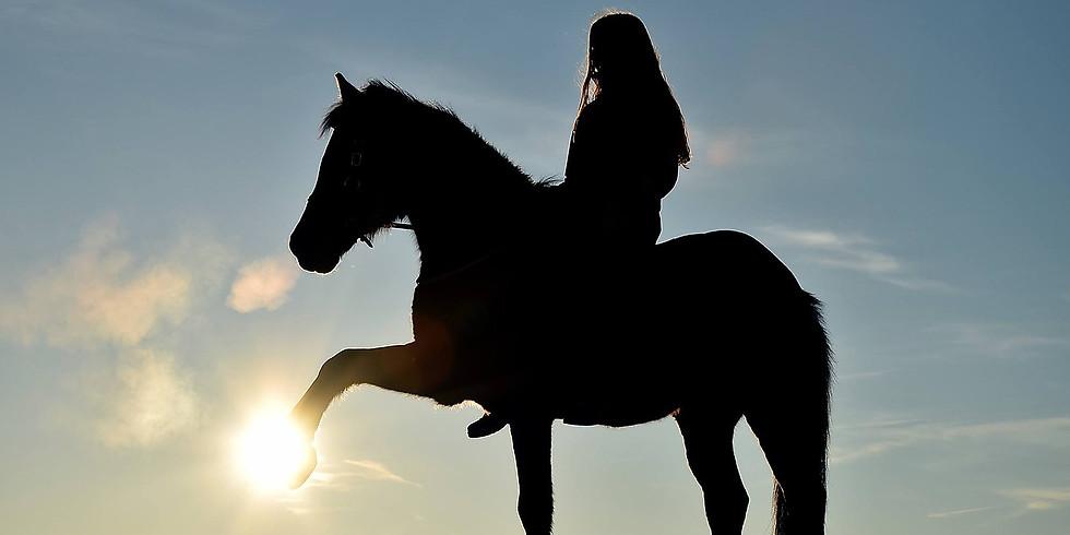 """""""Le monde sensoriel du cheval"""" - Journée d'étho niveau 3"""