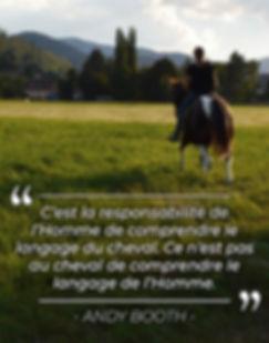 citation_andy_booth_les_cinrs_de_lor.jpg
