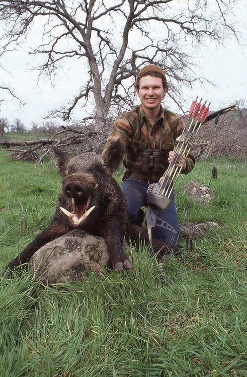 CA Wild Boar.