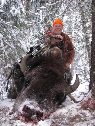 WY Wild Bison 2020