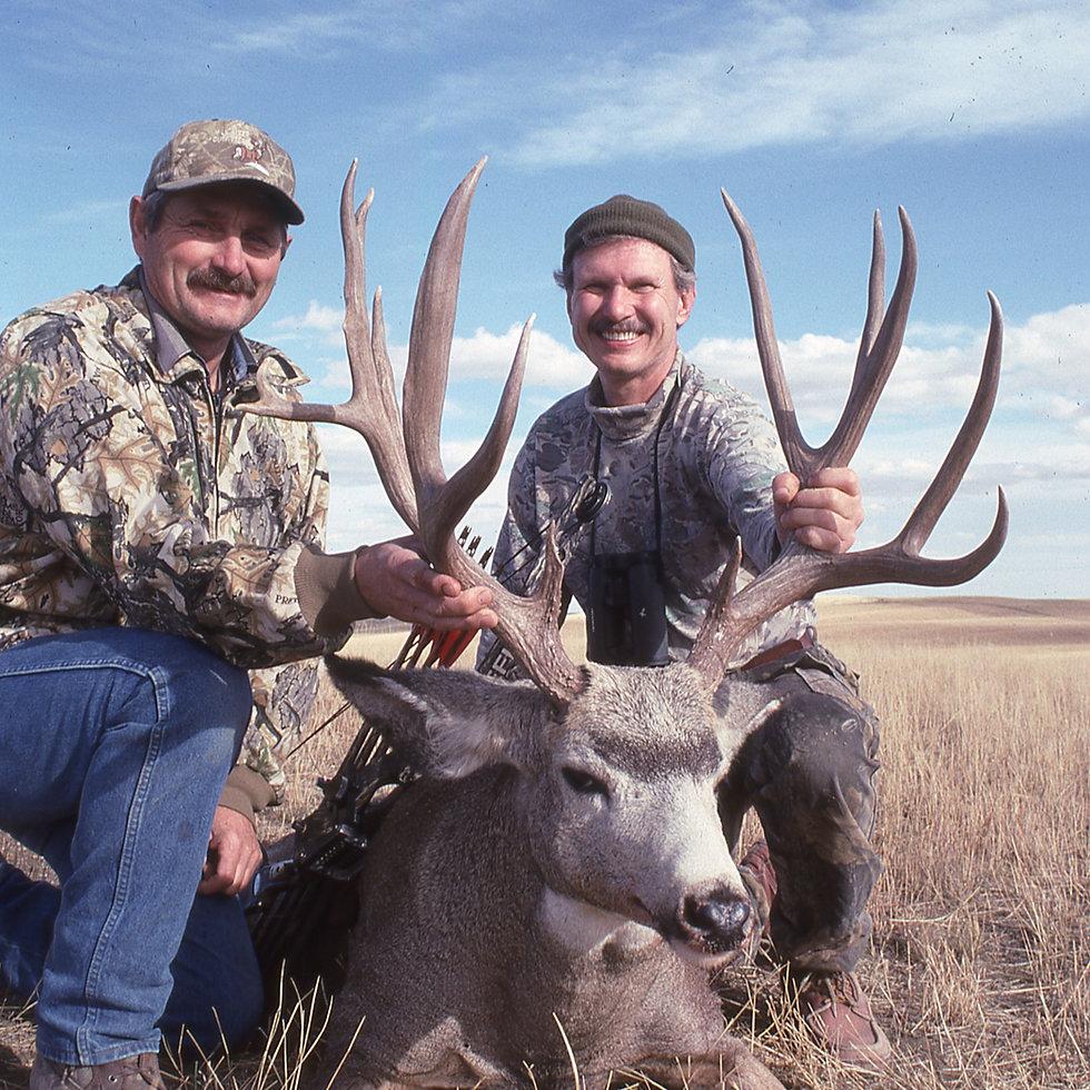 Mule Deer Bonanza!