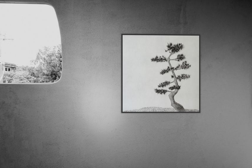 Kyla Cresswell - Matsu III (2017), Drypoint (ed. of 12), Image  27x27 cm ; Paper: 39x37,5 cm - Courtesy of the artist