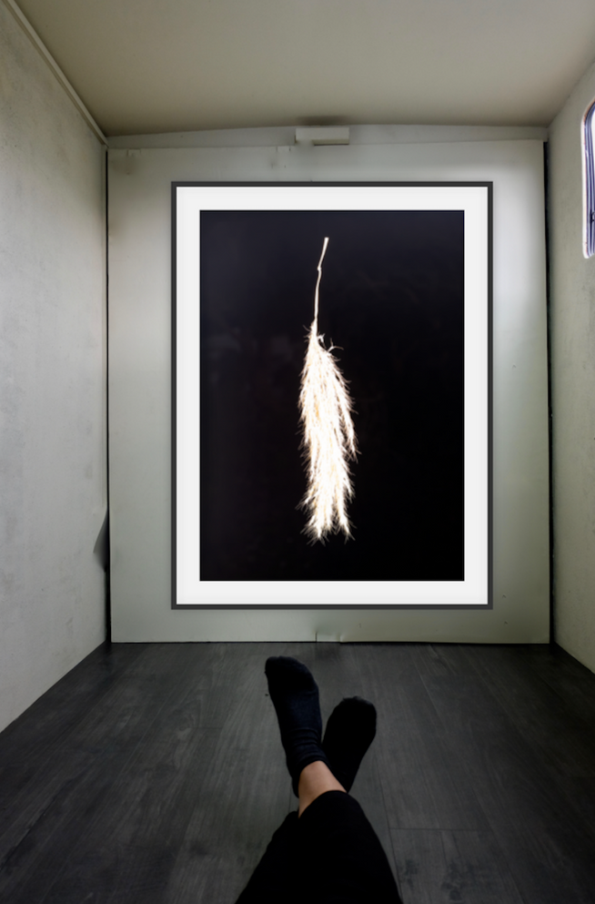 Toetoe — after Susuki from The Fifteenth Night (2019) - Archival inkjet print (framed). 25, 5 x 35cm. Edition of 3 + AP - Courtesy of the artist