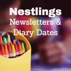 Nestling Newsletter 2020