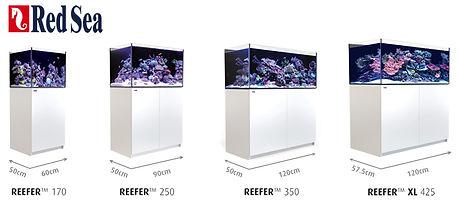 Full-REEFER-Series-1.jpg