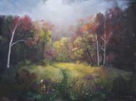 Autumn Glade Run