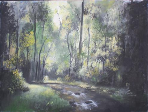 Deep Forest Stream