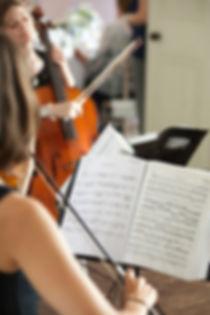 Hire a String Quartet