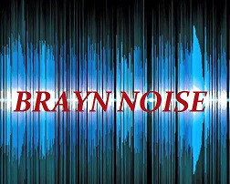 Help Keep Brayn Noise Alive!!