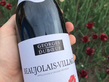 Part 2: A top wine at below $15 - Beaujolais