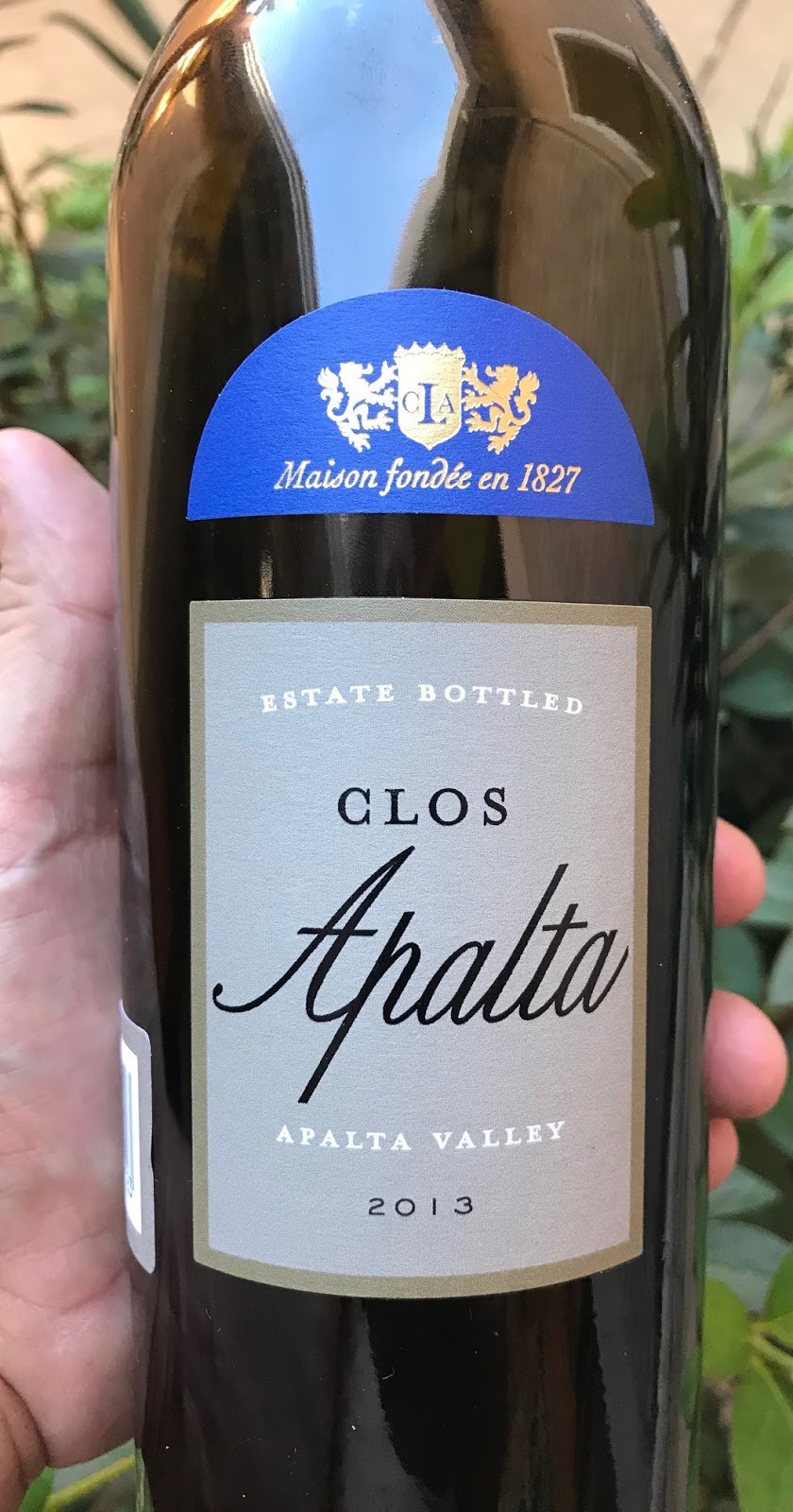 Clos Apalta 2013 - A 100 point wine!