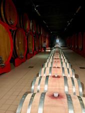 Best_Tuscany_wines_13.jpg