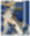Header-logo_V3.png
