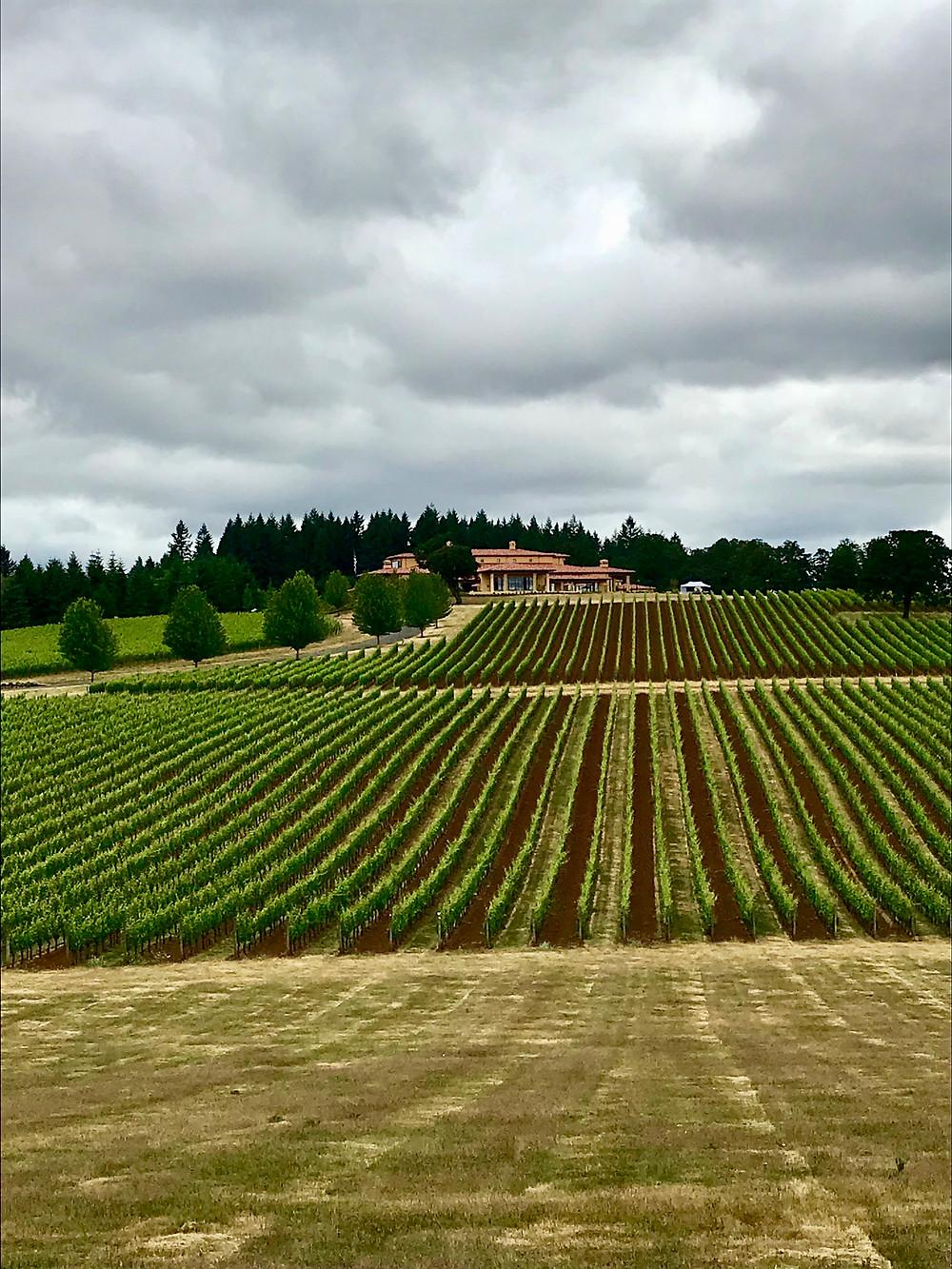 Points on Wine Oregon Trip