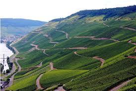 Mose Wine Region