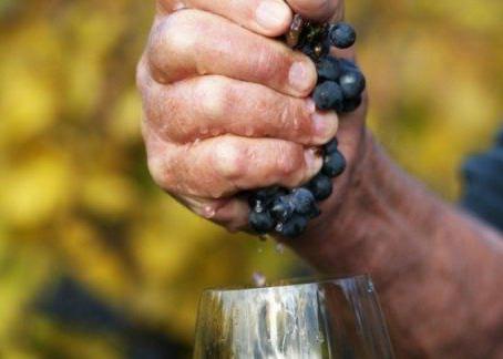 The next few months on Points on Wine..Natural wines, Bordeaux 2019 En-primeur recap and celebrities