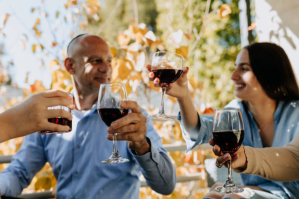 Top red wine glasses for Napa wines