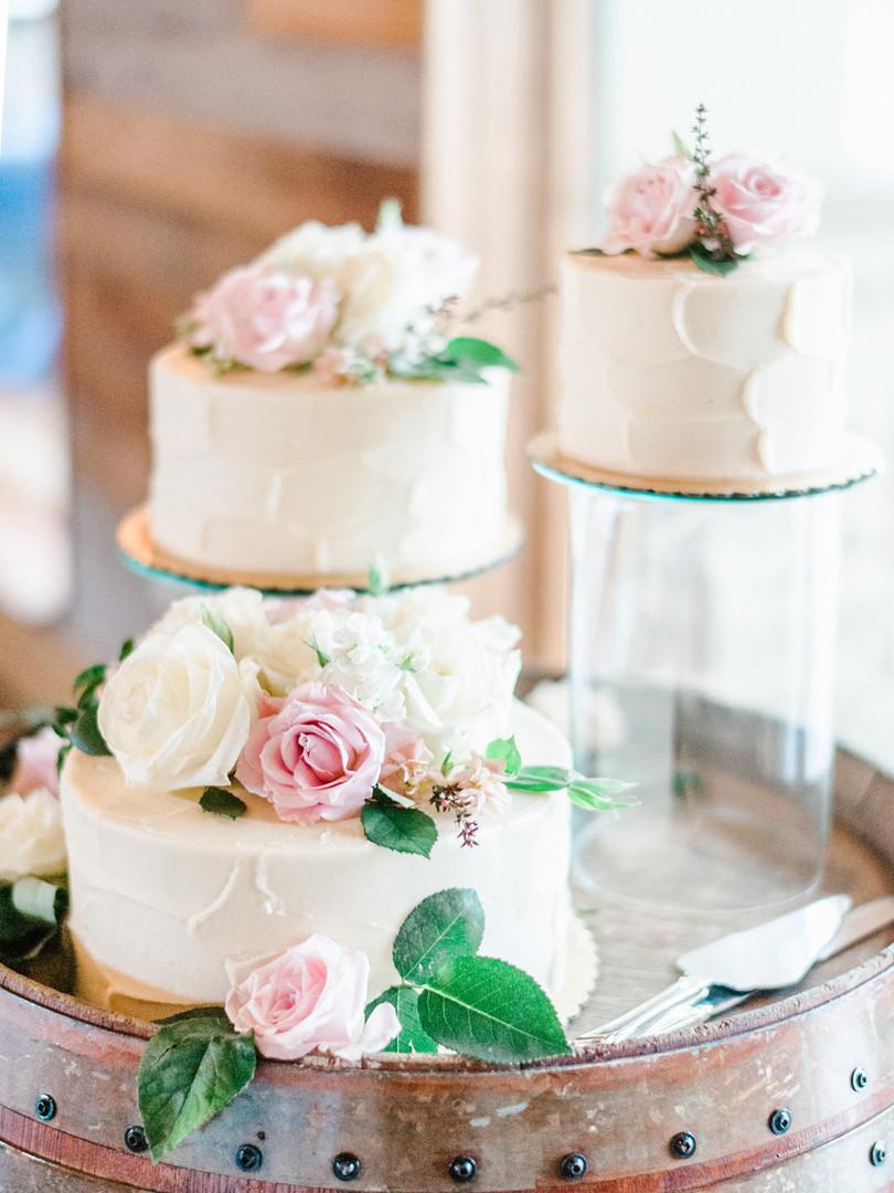 Elissa + Brandon Wedding 2018-377.JPG
