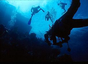 Posada Del Sol Dive 4-28.jpg
